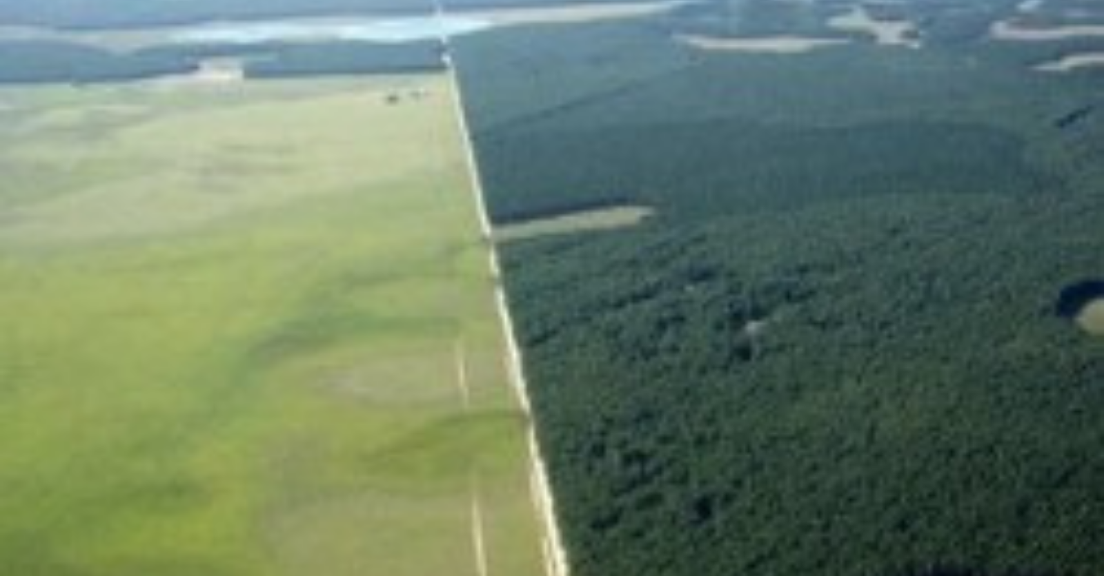 Civil Society Letter Concerning Harvard University Land and Natural Resources Investments