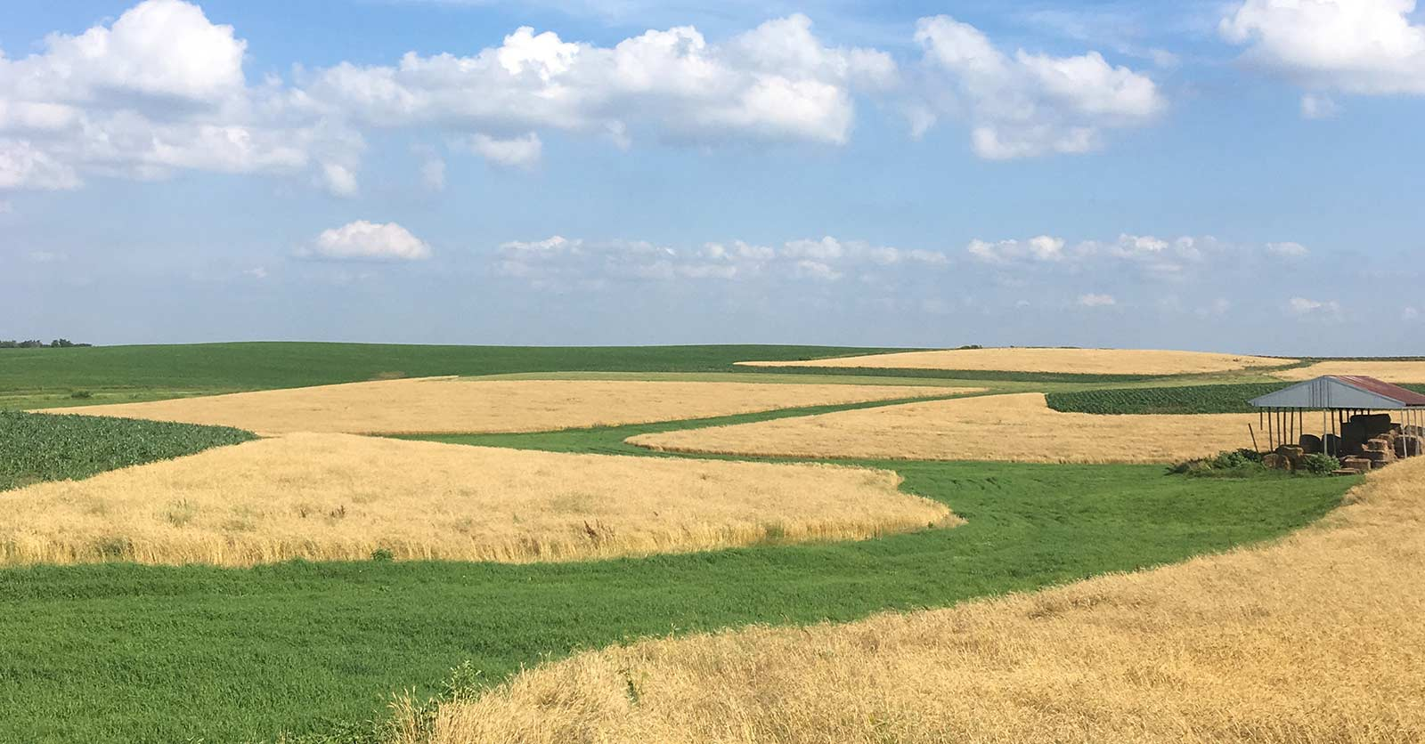 Soil Wealth Report Released: $47.5 Billion Now Explicitly Targeting Regenerative Agriculture