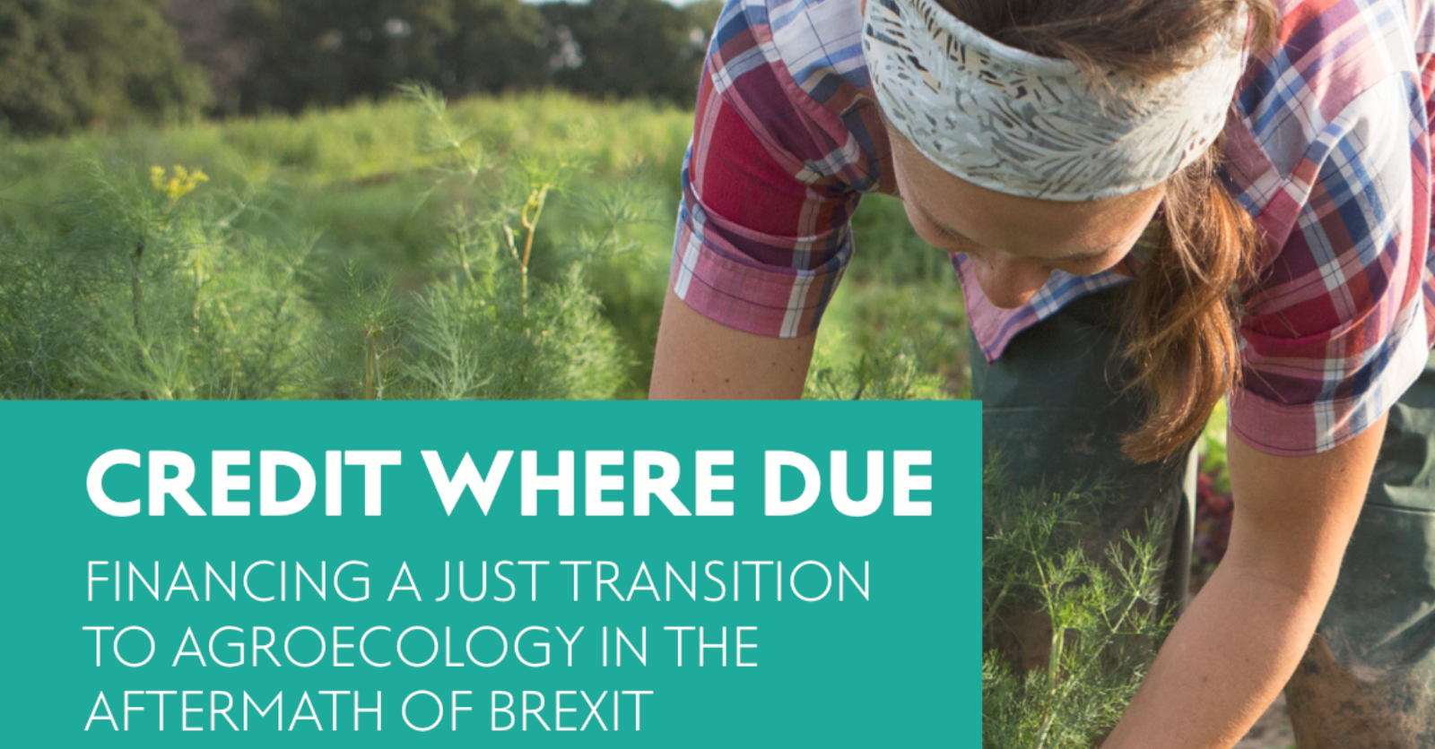 Credit Where Due: Financing a Just Transition to Agroecology in the Aftermath of Brexit